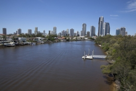 A greenbridge will span the Nerang River